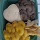 Farmers' Market Box